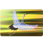 Laser PVC Card