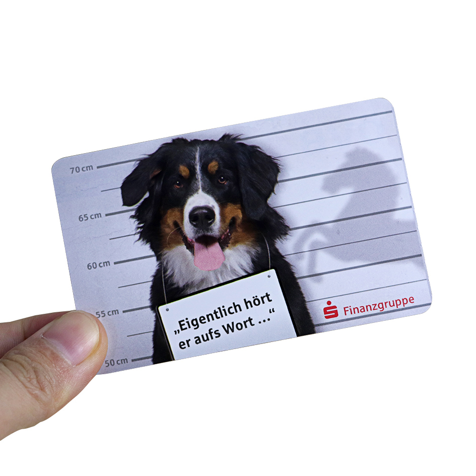 pet store ID card with dog photo