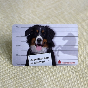 0.25mm Thickness PT Dog Photo Pet Store ID Card